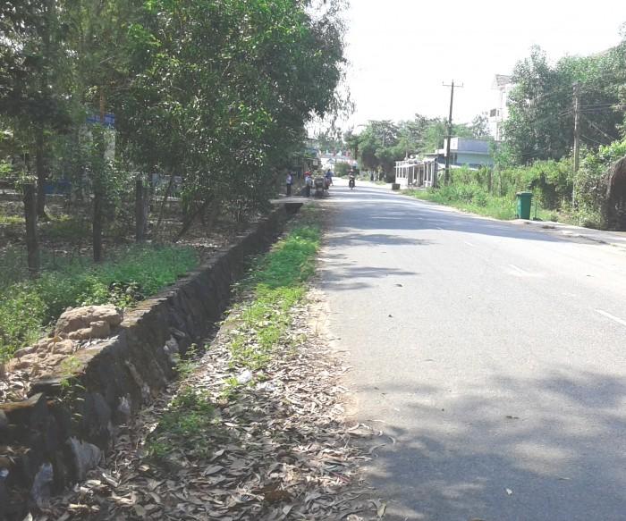 Bán đất Vĩnh Thanh-Nhơn Trạch 460m2