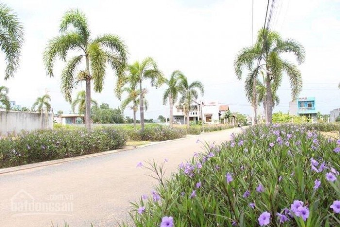 Bán đất nền 10 xuất nội bộ giá mền gần KCN nhựt Chánh Bến Lức tin đặc biệt