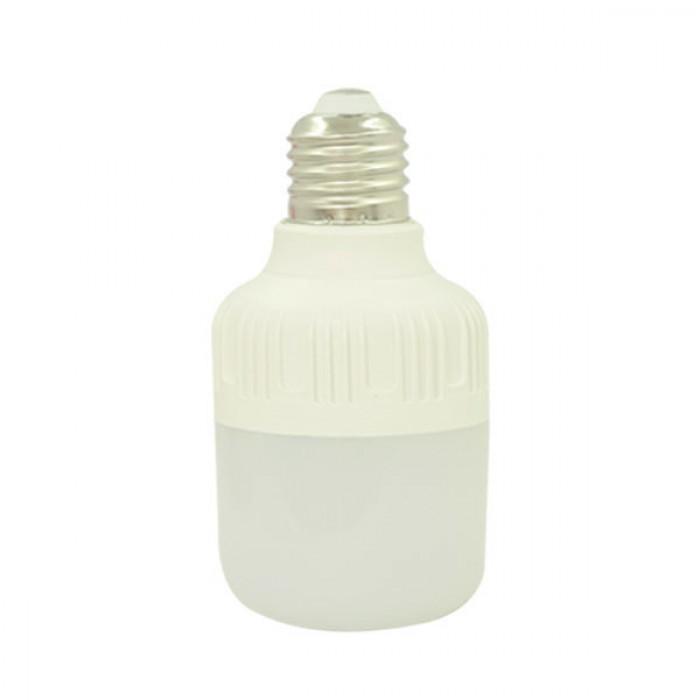 Combo 2 đèn búp led trụ 10w 4938