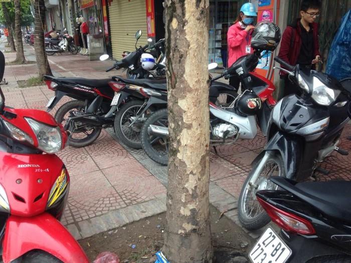 Cho thuê mặt bằng kinh doanh trà sữa hoặc cà phê tại Trâu Qùy Gia Lâm