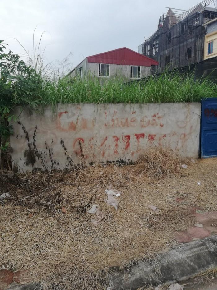 Bán đất khu 31ha Trâu Quỳ Gia Lâm Hà Nội