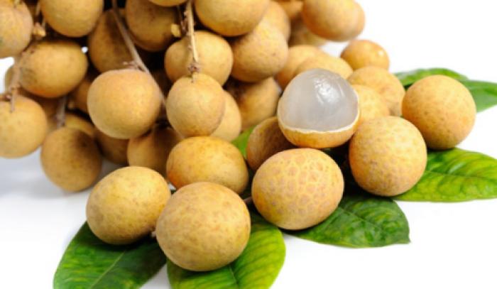 Giống nhãn hương chi, nhãn lồng hưng yên, cây giống chuẩn, cam kêt chất lượng đến khi cây ra trái.3