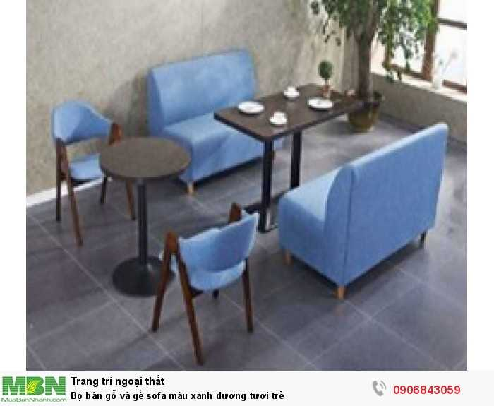 Bộ bàn gỗ và gế sofa màu xanh dương tươi trẻ0