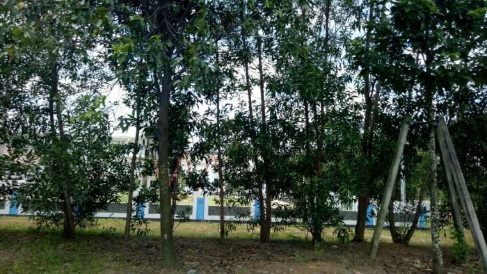 Bán gấp 300m2 đất thổ cư, đang cho thuê kinh doanh,  gần trường, gần chợ