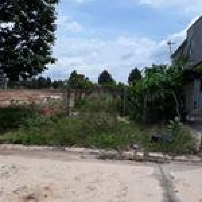 Bán đất Cần tiền kinh doanh DT: 200m2. Bình Chánh, HCM