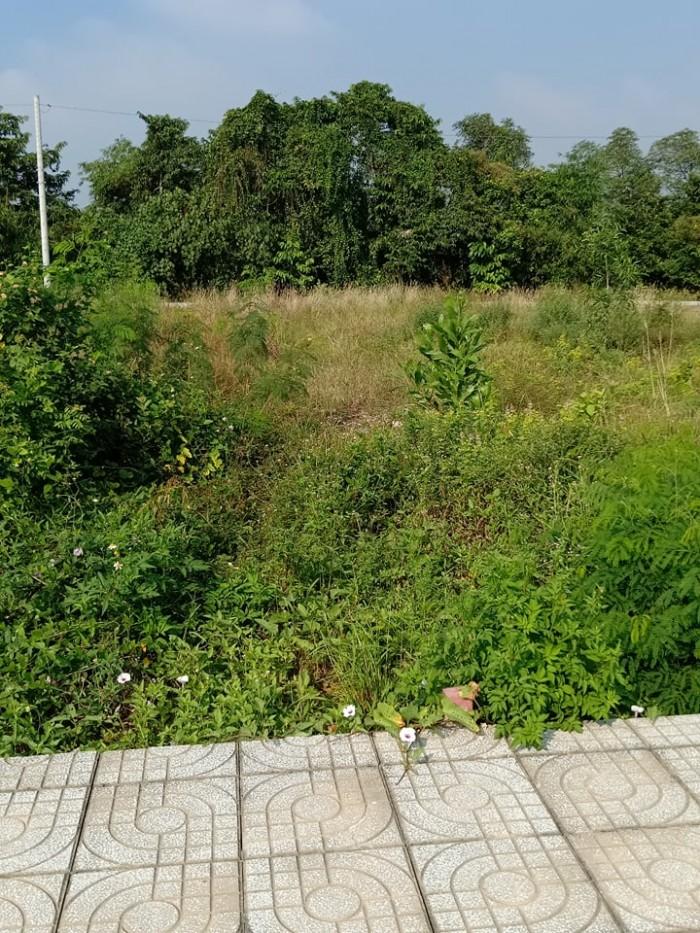 Bán đất Thạnh Xuân quận 12 2 mặt tiền đường 12m
