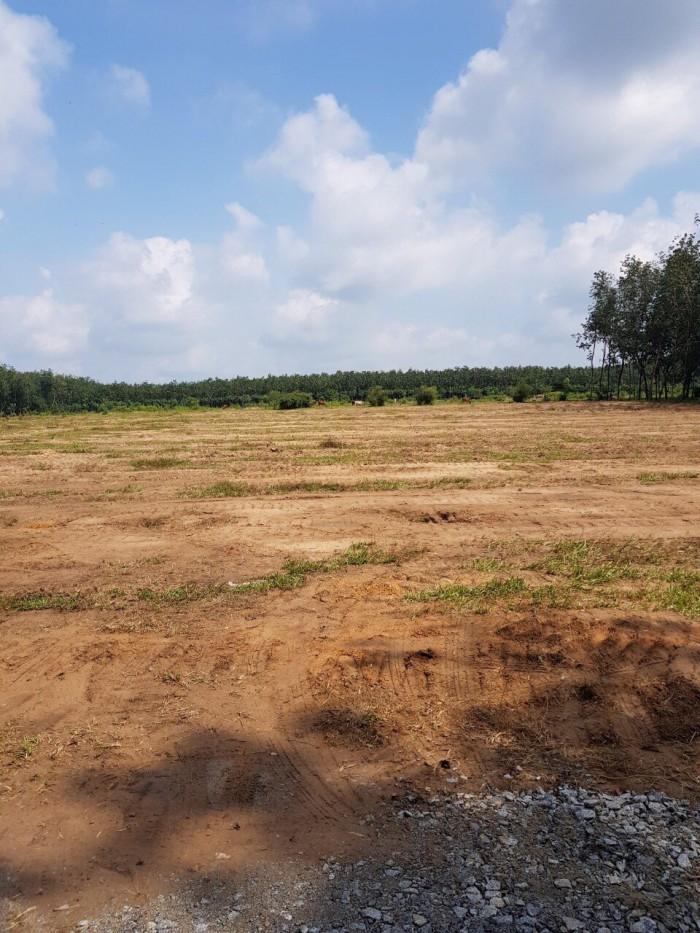 Cần bán một số nền đất tại dự án Phúc Long city thuộc xã Phước Hòa huyện Phú Giáo tỉnh Bình Dương.