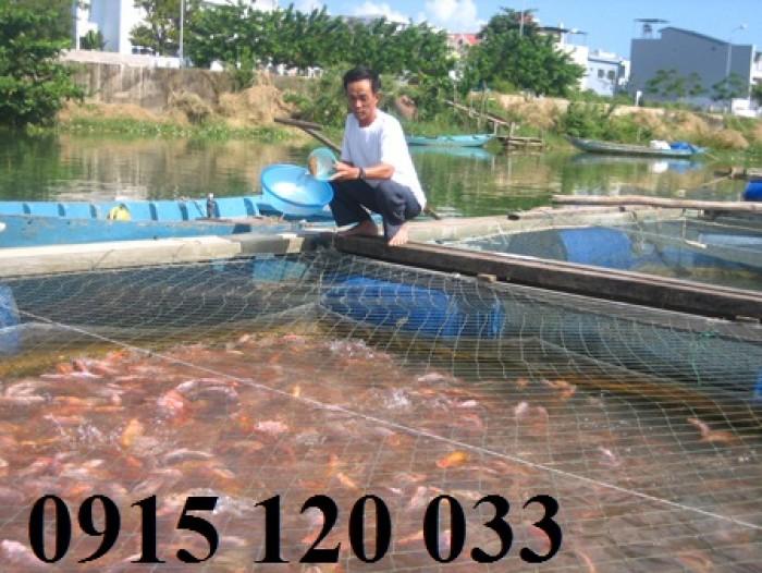 Lồng nuôi cá theo yêu cầu từ lưới Nhật cũ6