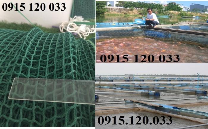 Lồng nuôi cá hiệu quả cao khi mắt vừa đủ, lưới Nhật chất lượng cao4