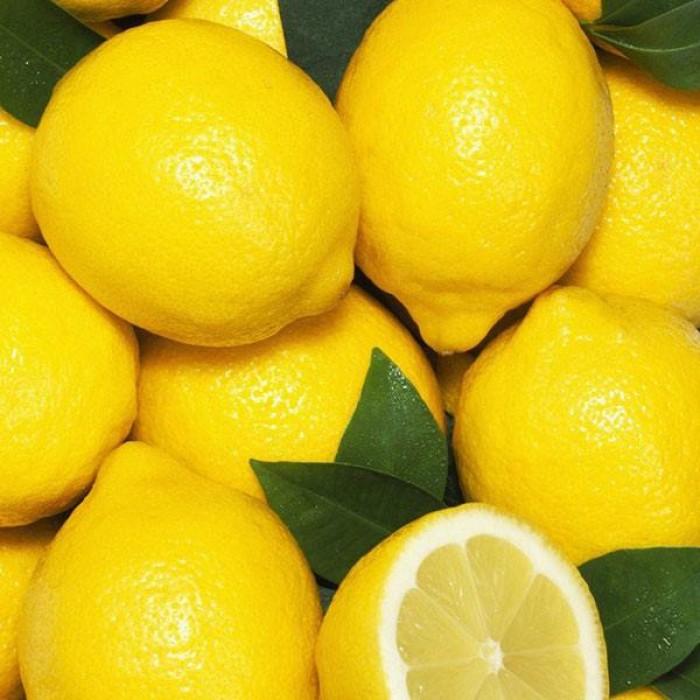 Giống chanh vàng eureka - viện cây giống trung ương chuyên cung cấp giống nhập khẩu chất lượng cao3