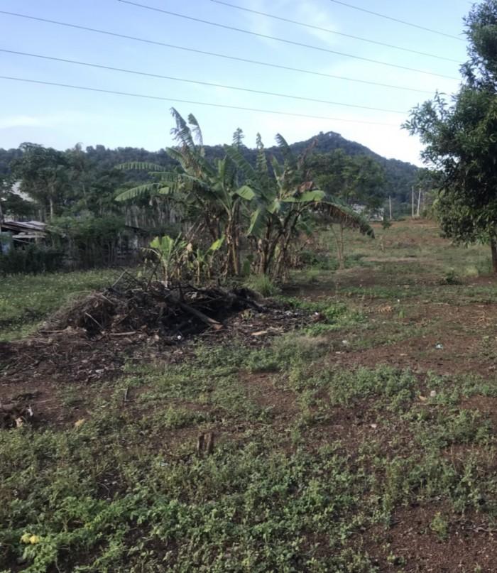 Bán 2 lô đất liền kề mặt tiền đường A1 Phạm Ngũ Lão, 125m2