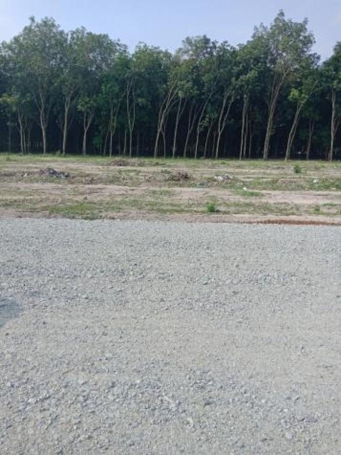 Cần mua đất nền Biên Hòa dt từ 60m2 trở lên giá cao, thanh toán nhanh trong ngày.