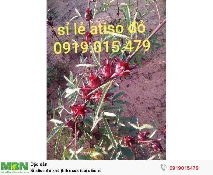 Sỉ atiso đỏ khô (hibiscus tea) siêu rẻ