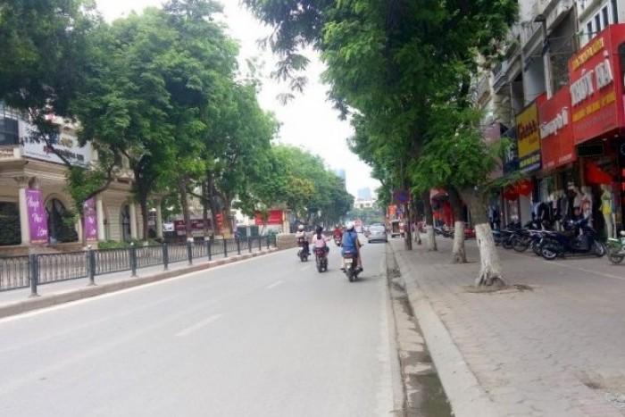 Bán Nhà Kinh Doanh Chùa Bộc 48m2, MT 4m