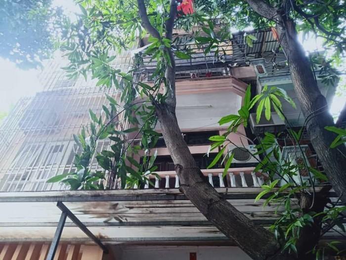 Cực hiếm, Đào Tấn, ngõ rộng 52m2x4t giá chào