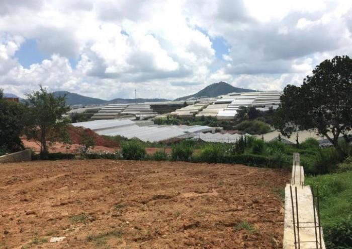 Muốn view có view Hồ bonus view Thông + Đèn Nam Hồ P11, Đà Lạt, BĐS Smartland