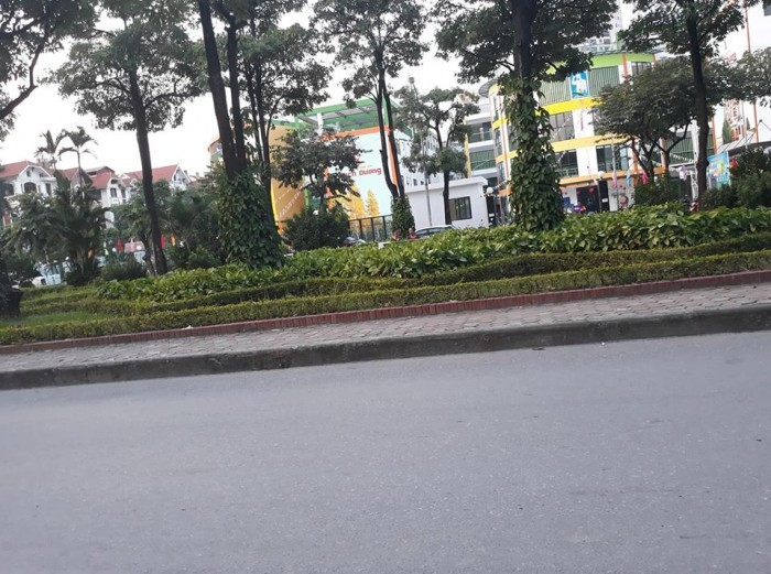 Mặt Phố 80m2, 4t, Mt6m View Vườn Hoa, Trường Học Nguyễn Công Thái, Nguyễn Cảnh Dị Mặt Phố 80m2