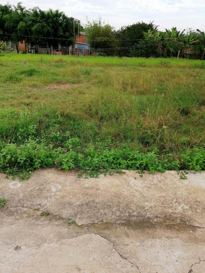 Bán 1 nền 90m2 thổ cư Ấp Hòa Thuận 2, xã Trường Bình, hẻm xe hơi ra vào thoải mái.