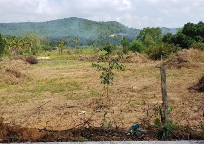 Bán 9 công đất Ở Nông Thôn tại đường Nguyễn Trung Trực – Bắc Đảo, Phú Quốc