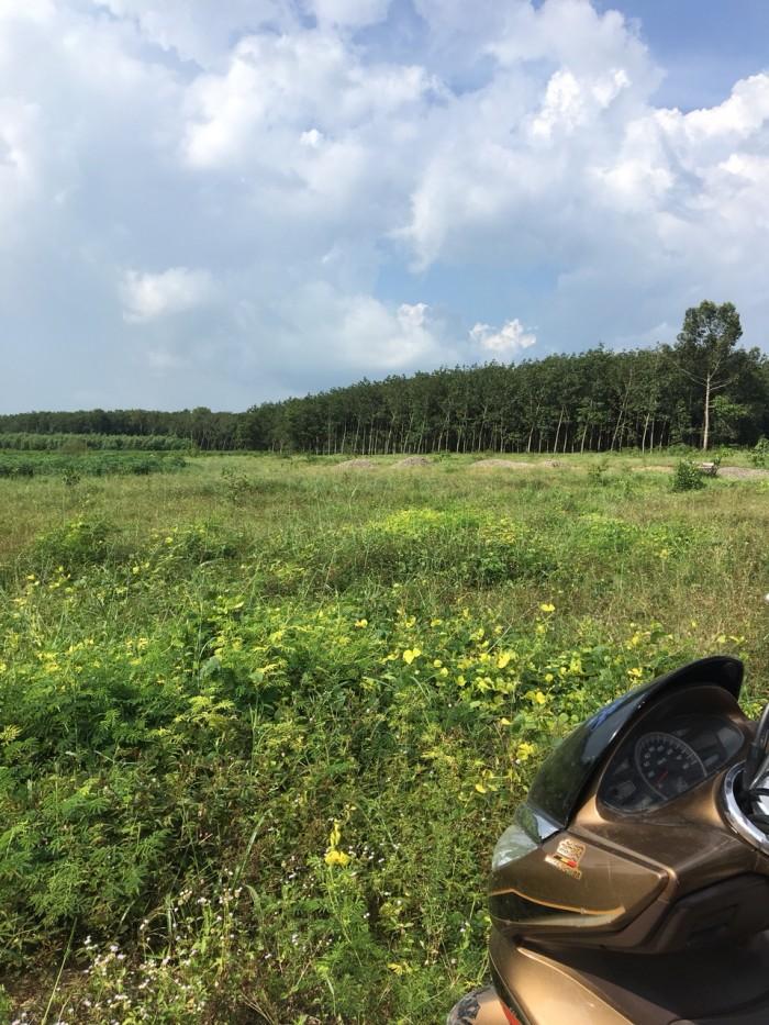 Bán Đất KCN Long Phước Sonadezi
