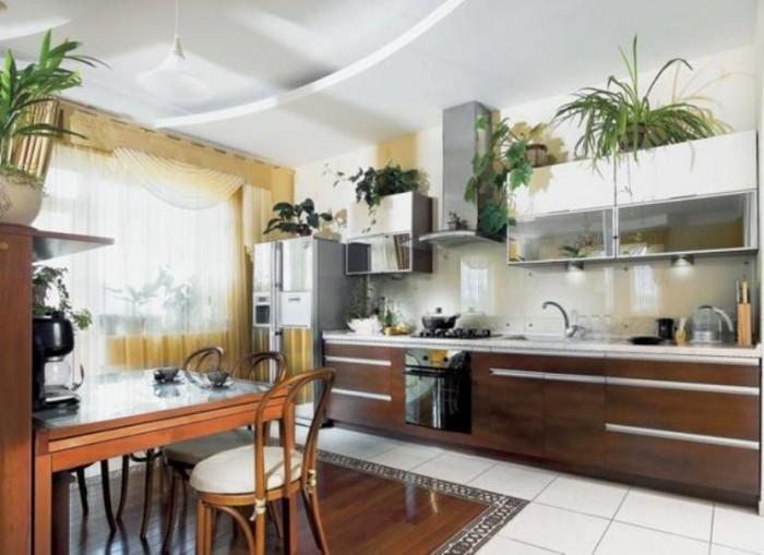 Siêu Phẩm Nhà Mặt Tiền Đường Hoàng Hoa Thám Quận Tân Bình, DT 6.5x29m Vuông vức, Giá 45 Tỷ Còn Thương Lượng.