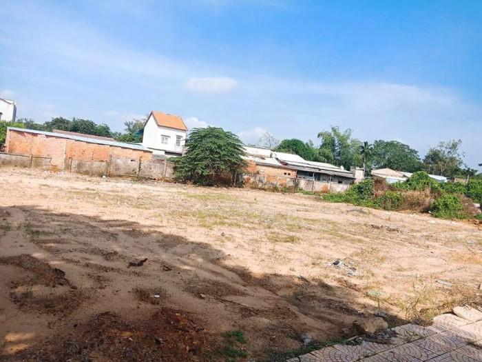 Bán 1000m2 đất nền quy hoạch xây khách sạn trung tâm phố cổ Hội An