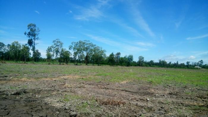 Cần bán lô đất nền Long An 500m2 giá hấp dẫn 1, 6 TRIỆU/M2, SHR, ...