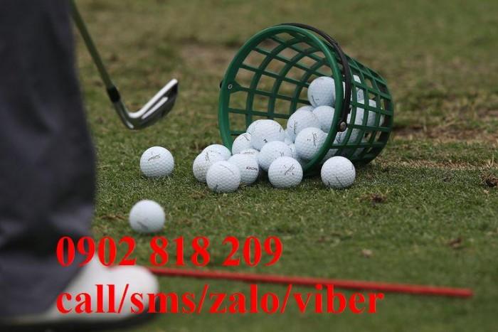 Rổ golf nhựa màu xanh đựng 50 banh4