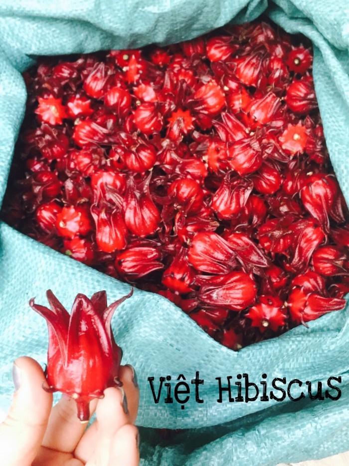 💥VIỆT HIBISCUS - CUNG CẤP CÁC LOẠI SẢN PHẨM TỪ HOA ATISO ĐỎ💥 ️🌳GIẢI NHIỆT 🌳LÀM ĐẸP 🌳 CHĂM SÓC SỨC KHỎE 1. Hoa Atiso đỏ tươi (Hay còn gọi bụp giấm, hibiscus) 2. Siro kèm mứt hoa Atiso đỏ 3. Trà khô Atiso đỏ loại nguyên bông có vị chua nhẹ 4. Trà khô Atiso đỏ loại cánh có vị chua nhiều 5. Mứt atiso đỏ sấy giòn  👉 Khách SỈ LẺ không hạn chế số lượng. 👉 Hàng có quanh năm đảm bảo chất lượng lâu dài  🌟🌟🌟 Công dụng 🌺 Giải nhiệt làm đẹp da,tăng cường khả năng hệ tiêu hóa,lợi tiểu. 🌺 Giảm nồng độ cholesterol,điều hòa huyết áp . 🌺 Trong hoa chứa Cynarin và Silymarin là 2 chất chống oxy hóa.Giàu vitamin C. 🌺 Ngăn ngừa bệnh tim mạch,tăng cường khả năng của gan. Đài hoa nhai ngậm trị bệnh viêm họng. 🌺 Có thể chế biến thành siro ,mứt hoặc gia vị cho các món kem bánh ngọt  🚗🚗🚗Hình thức vận chuyển: ☑️ Giao hàng tận nơi trên toàn quốc . ☑️ Nhưng đơn hàng sỉ có thể gửi xe khách để giảm bớt chi phí vận chuyển.  🌺 Mua càng nhiều giá càng ưu đãi nhé ! 🌺 Khuyến khích những khách hàng mua số lượng lớn ,hợp tác kinh doanh. Khu vực khác ib em tư vấn nhé . Đảm chất lượng luôn nha  👨💼MỌI CHI TIẾT XIN LIÊN HỆ : ▶️Việt Hibiscus 👉 Hotline: 0973 542 579 (Ms Châu) 🏤 Địa chỉ: 482/10/36/20 Nơ Trang Long, Phường 13, Quận Bình Thạnh #Trà_Hibiscus #Hoaatisodo #Hoabupgiam #Hibiscus #Hoa_atiso_đỏ #Sỉ_atiso_đỏ #Trà_atiso #Trà_atiso_đỏ #Sỉ_trà_atiso_đỏ #Trà_bụp_giấm #Hoa_bụp_giấm #Hoa_atiso_đỏ_giá_rẻ #Siro #Caohuyetap #Mứt_atiso_đỏ