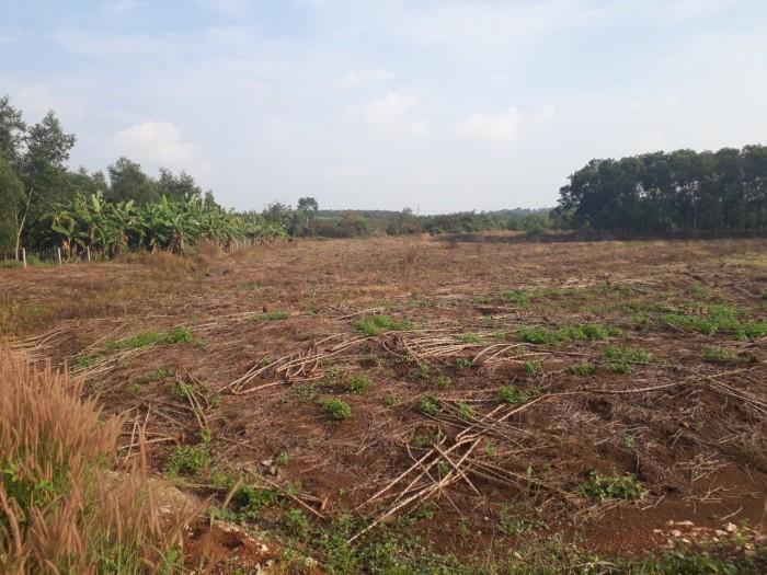 Chính chủ cần tiền Bán gấp lô đất sổ đỏ ở Bàu Cạn,Long Thành, 8.300 m2
