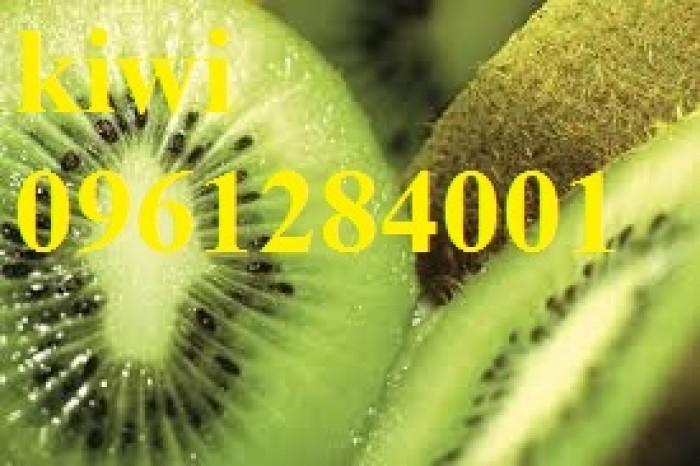 Bán cây giống kiwi, kiwi ruột xanh, kiwi ruột vàng, cây kiwi14