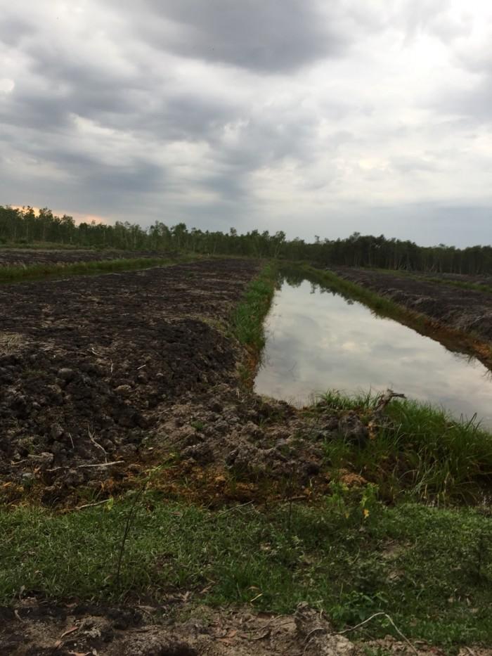 Bán 5ha đất làm trang trại tại xã Thái Mỹ, huyện Củ Chi, TP.HCM