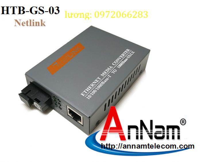 Bộ chuyển đổi 2 sợi Converter quang điện Netlink HTB-GS-03 loại 10/100/10002