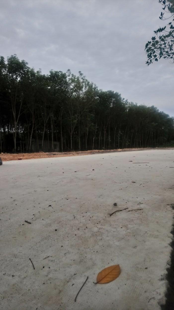 Đất giá rẻ, đường bê tông 8m thông ra Lê Duẩn, Ngô Tất Tố