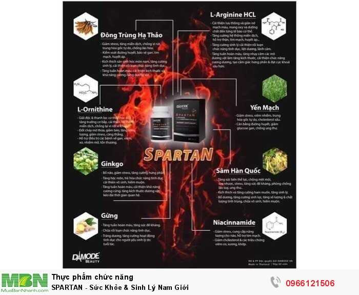 SPARTAN - Sức Khỏe & Sinh Lý Nam Giới2