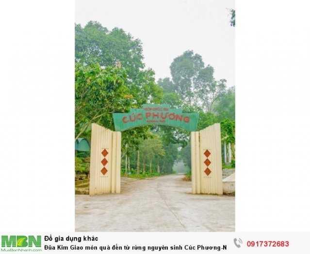 Đũa Kim Giao món quà đến từ rừng nguyên sinh Cúc Phương-Ninh Bình3