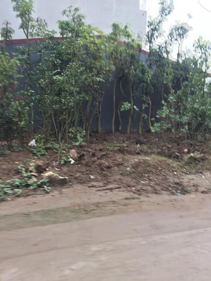 Bán đất làng Cam, Dt 61.8m2, mt 3.5m, hậu 4m