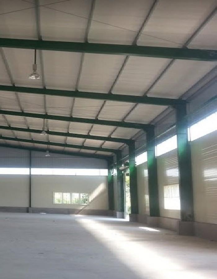 Chú Năm cần tiền chia tài sản cho con, bán gấp kho 1087m2 mặt tiền Nguyễn Thị Rành, Củ Chi.