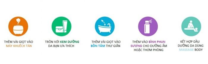 Tinh dầu hương Vani Plus 20ml - Vanila EO nguyên chất thiên nhiên Ấn Độ - Thư giãn, kích thích3