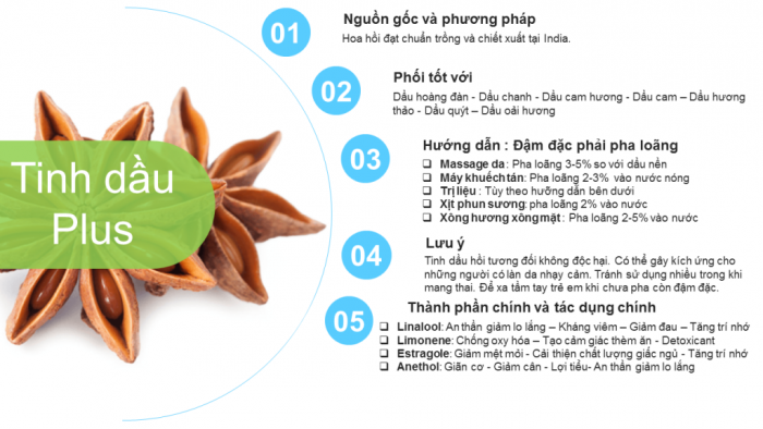 Tinh dầu hoa hồi plus 20ml – Tinh dầu hồi nguyên chất thiên nhiên Ấn Độ – Thiền định, tập trung2