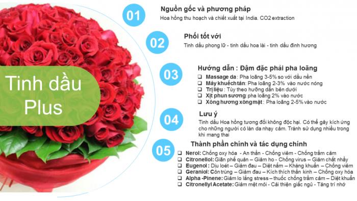 Tinh dầu hoa hồng plus 20ml – Rose EO nguyên chất thiên nhiên Ấn Độ – Lãng mạn, quyến rũ1