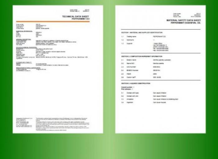 Tinh dầu bạc hà Plus 20ml - Tinh dầu bạc hà nguyên chất thiên nhiên từ Ấn Độ - Sảng khoái, thông mũi1