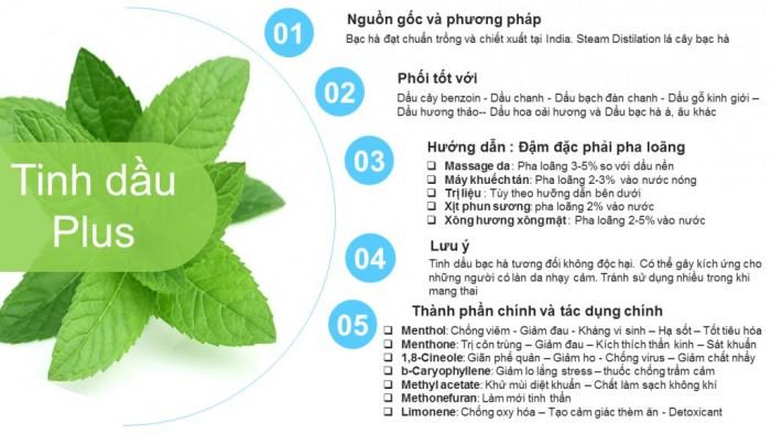 Tinh dầu bạc hà Plus 20ml - Tinh dầu bạc hà nguyên chất thiên nhiên từ Ấn Độ - Sảng khoái, thông mũi3