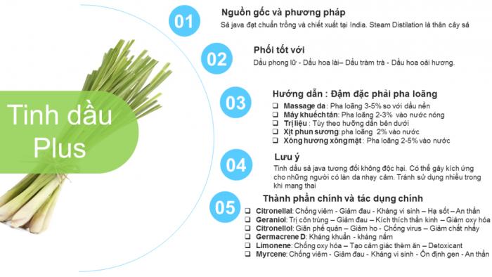 Tinh Dầu Sả Java Plus (20ml) - JAVA EO đuổi muỗi côn trùng trị mụn thư giãn tinh thần nhẹ nhàng2