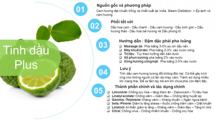 Tinh Dầu Cam Hương Plus (20ml) - Tinh Dầu Cam Hương Nguyên Chất đuổi muỗi trị mụn làm đẹp thư giãn2