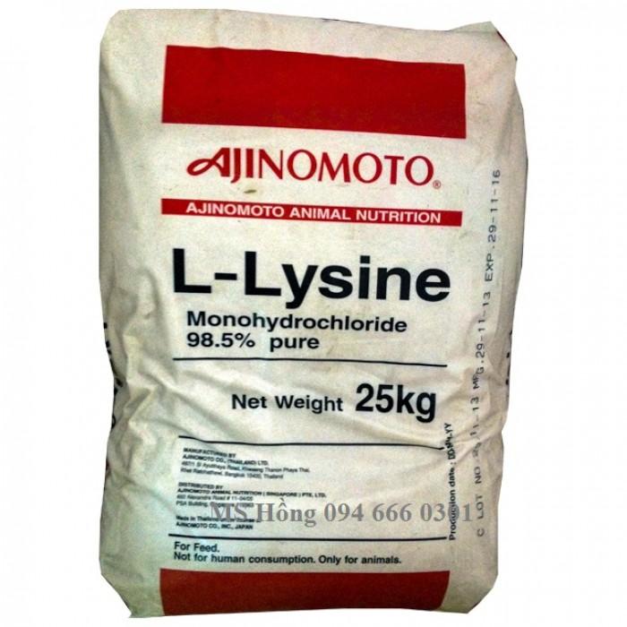 L-LYSINE0