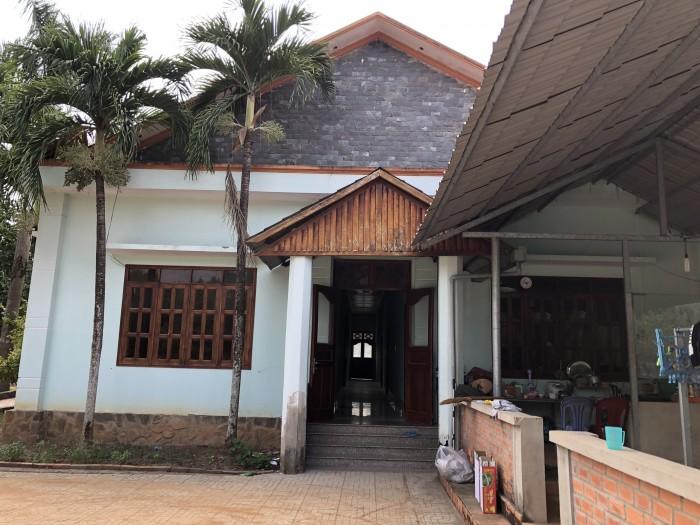 Bán Xưởng Gỗ Tại Phước Hòa Phú Giáo Bình Dương.