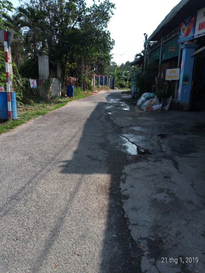 Đất Đô Thị  10m X 24m Đường Nhựa Khu Phố 1 Thuộc Thị Trấn Củ Chi Huyện Củ Chi