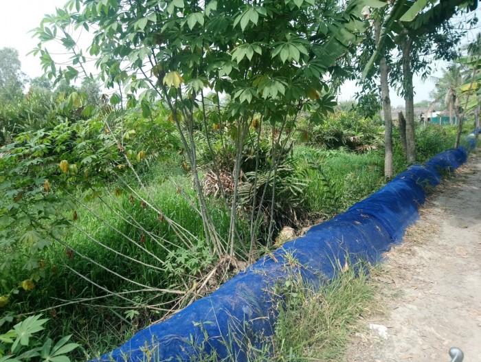 Bán đất lớn mặt tiền đường số 9, Nguyễn Xiển, P. Trường Thạnh, Q9, HCM giá chỉ 10tr/m2