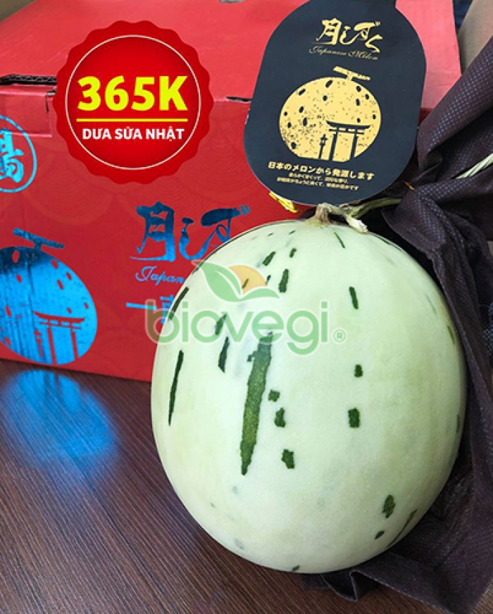 Dưa sữa Nhật - Biovegi1